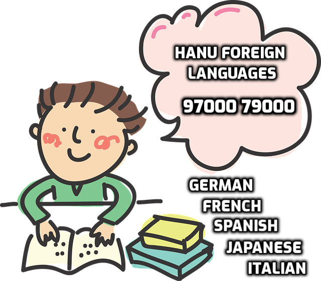 german learning institutes in hyderabad